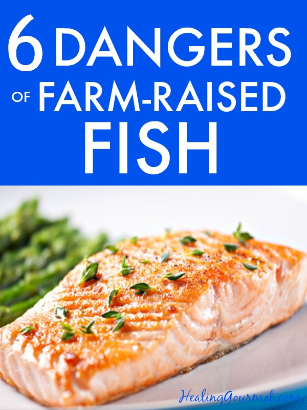 Discover the 6 health hazards of consuming farm-raised fish